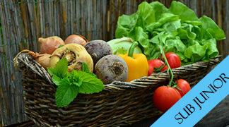 Sub Junior Garden Produce